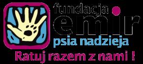 DENTASPOT_Dentysta_Stomatolog_Poznan_emir